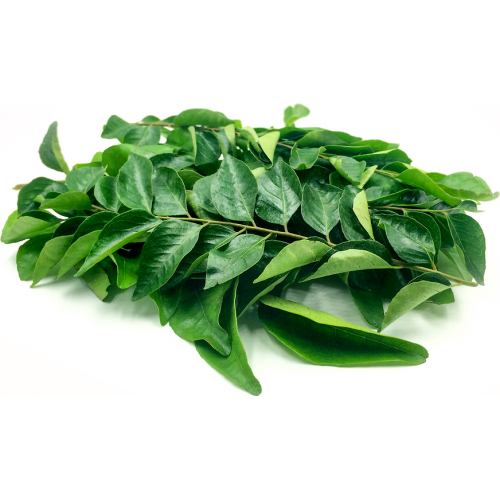 Curry Leaves - Organically Grown